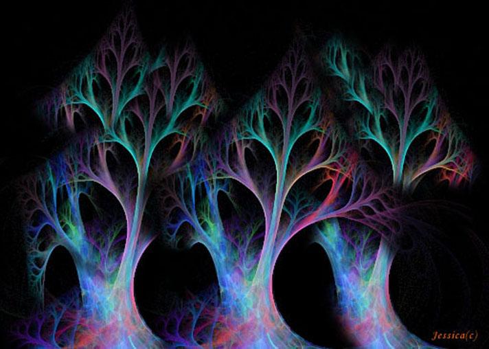 tree02cc.jpg